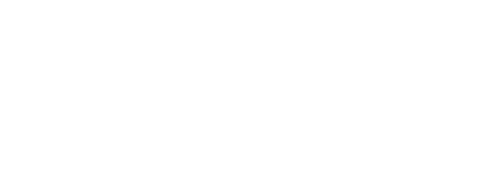 Saimaa Brewing Co